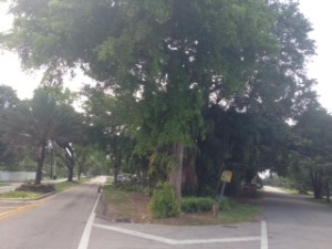 Triangle Park 125 St NE 3 Ave